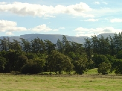 View of the Cairngorms from Conservatory